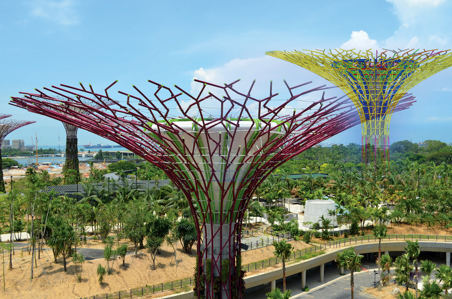Supertrees at the Gardens by the Bay in Singapore, created using Tekla software.